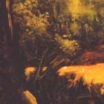 PAISAJE DE UN BOSQUE - Detail 1